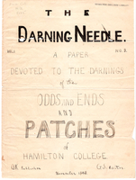Darning needle